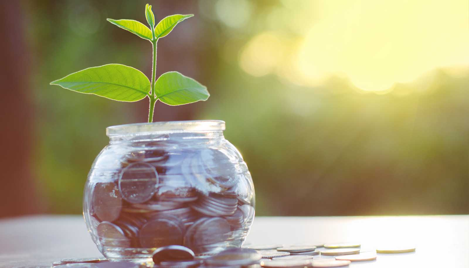 Fideiussione assicurativa Ladispoli - La soluzione migliore, rispetto a quella bancaria e a quella di istituti finanziari.